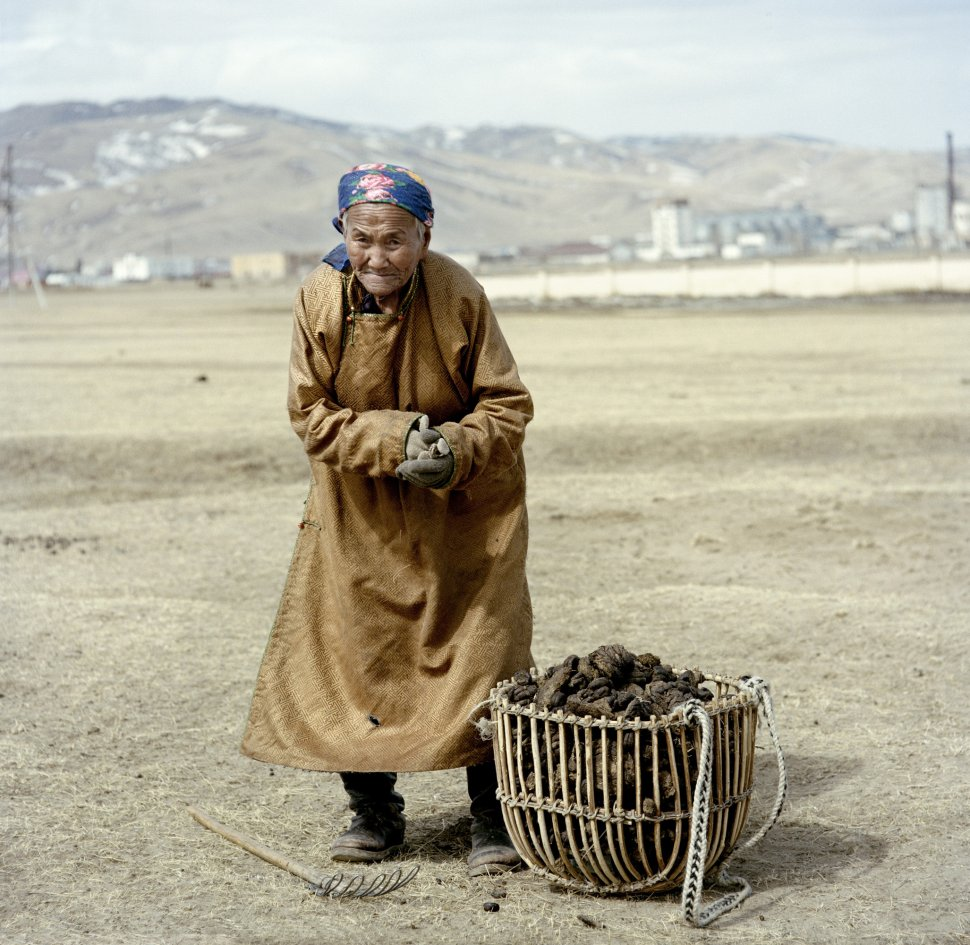 <p>A women collects sun-dried animal droppings. These are used to fuel the stove, located in the centre of the yurt, which provides heats both for the home and for cooking. In the city, the main fuel source is coal.</p> <p>Karakorum, March 2011.</p>
